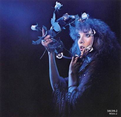 Music Box Stevie Nicks Come In Out Of The Darkness